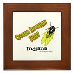 Indiana Cicada Framed Tile