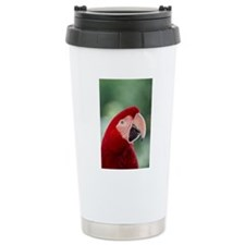 Red Macaw parrot Travel Mug
