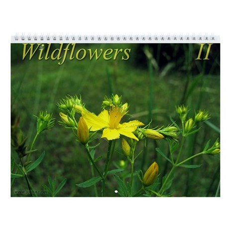 Wildflowers II Wall Calendar