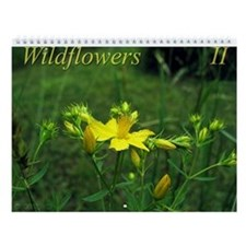 Wildflowers II Wall Calendar