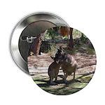 Kangaroo Mum Button