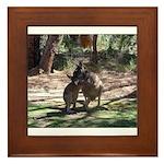 Kangaroo Mum Framed Tile