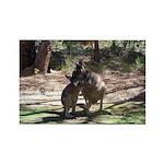 Kangaroo Mum Rectangle Magnet