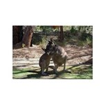 Kangaroo Mum Rectangle Magnet (100 pack)