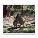 Kangaroo Mum Tile Coaster