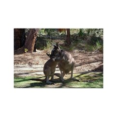 kangaroo mum tickles me Rectangle Magnet