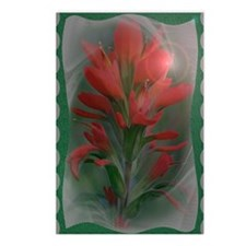 Indian Paintbrush Journal Postcards (Package of 8)