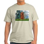 Lilies and Ruby Cavalier Light T-Shirt