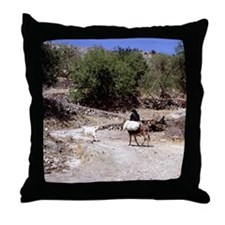 Lassithi. Crete. Donkeys carrying goo Throw Pillow