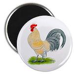 Porcelain Dutch Cock Magnet