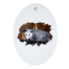 Possum on a Shelf Oval Ornament