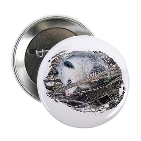 Peek-a-Boo Possum Button