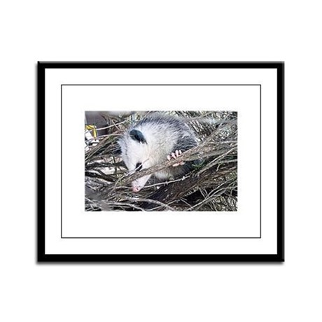Peek-a-Boo Possum Framed Panel Print