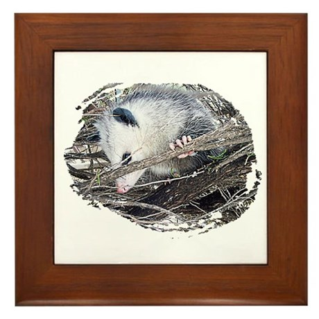 Peek-a-Boo Possum Framed Tile