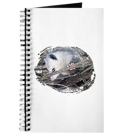 Peek-a-Boo Possum Journal