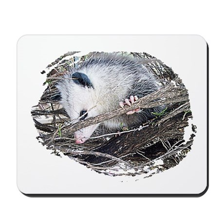 Peek-a-Boo Possum Mousepad