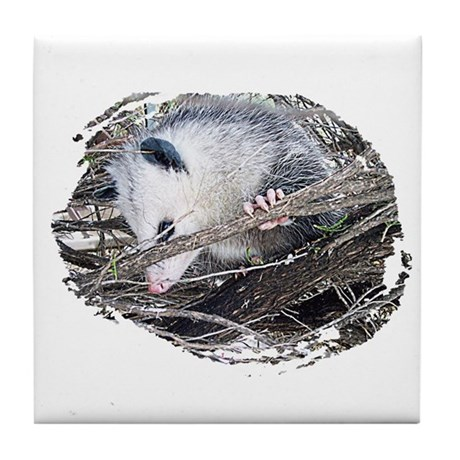 Peek-a-Boo Possum Tile Coaster