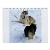 Cool Sled dogs Wall Calendar