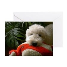 Labradoodle Dog Greeting Cards