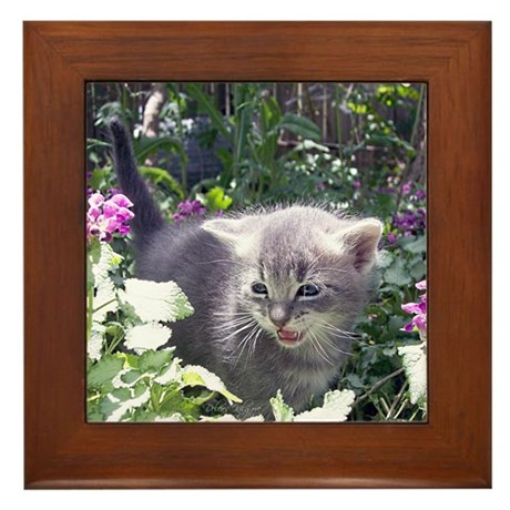 Flower Kitten Framed Tile