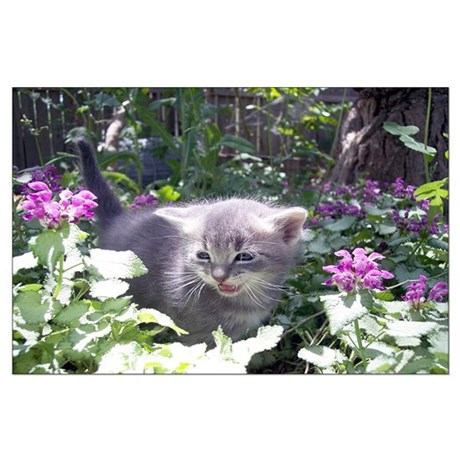 Flower Kitten Large Poster