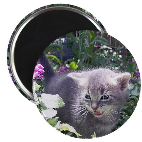 "Flower Kitten 2.25"" Magnet (10 pack)"