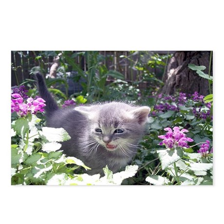 Flower Kitten Postcards (Package of 8)