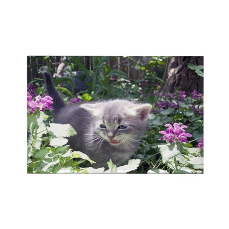 Flower Kitten Rectangle Magnet