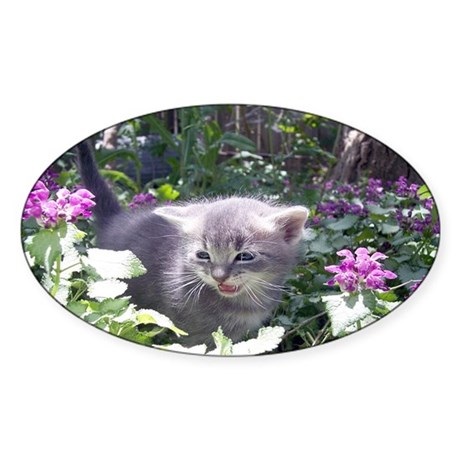 Flower Kitten Oval Sticker