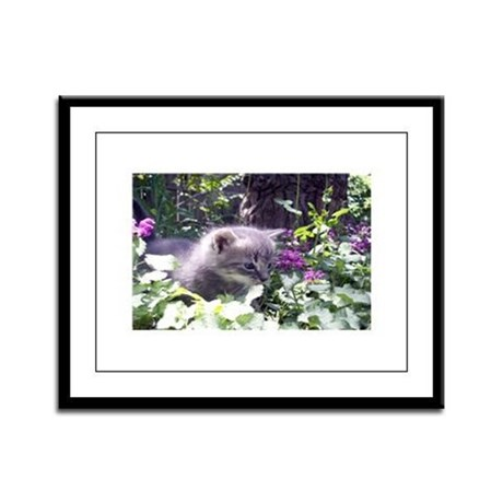 Gray Kitten Framed Panel Print