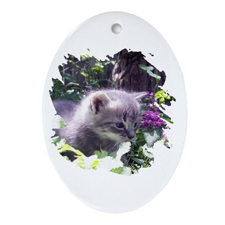 Gray Kitten Oval Ornament