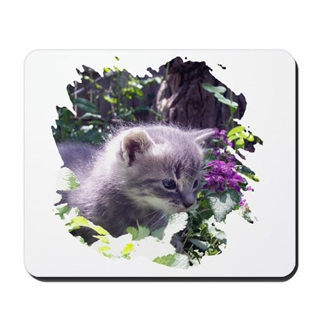 Gray Kitten Mousepad