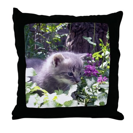 Gray Kitten Throw Pillow