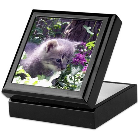 Gray Kitten Keepsake Box