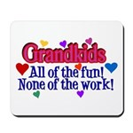 Grandkids - All the fun! Mousepad