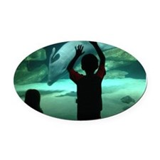 Dolphin Looking Glass Oval Car Magnet