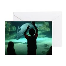 Dolphin Looking Glass Greeting Card