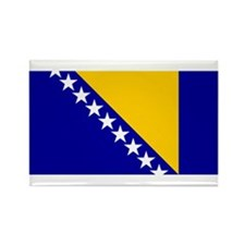 bosnia herzegovina flag Rectangle Magnet (100 pack