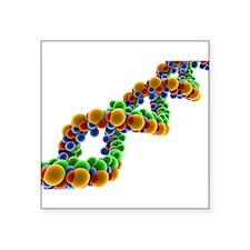 "Cute Deoxyribonucleic acid Square Sticker 3"" x 3"""