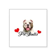 PitB-Heart-oval Sticker