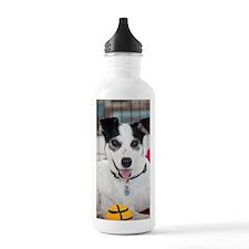 Bella a Rescue Dog Water Bottle