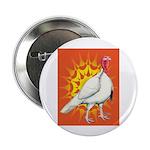 Sunburst White Turkey 2.25