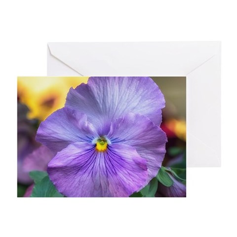 Lavender Pansy Greeting Cards (Pk of 10)