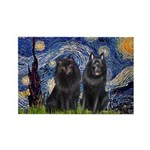 Starry Night & Schipperke Rectangle Magnet (10 pac