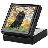 Spring & Schipperke Keepsake Box