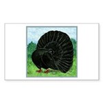 Fantail Black Pigeon Sticker