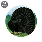 "Fantail Black Pigeon 3.5"" Button (10 Pack)"