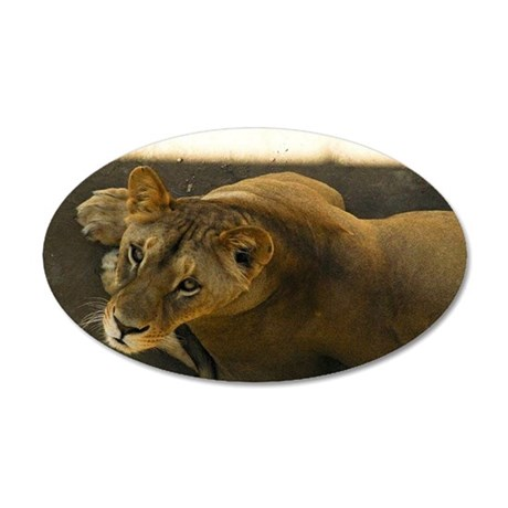 Watching You Lioness Wall Decal