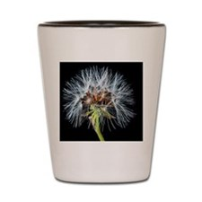 Cute Dandelion seeds blowing in the wind Shot Glass