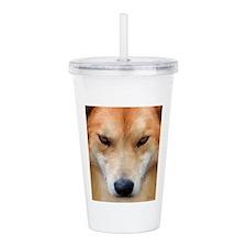 Cool Dingo Acrylic Double-wall Tumbler